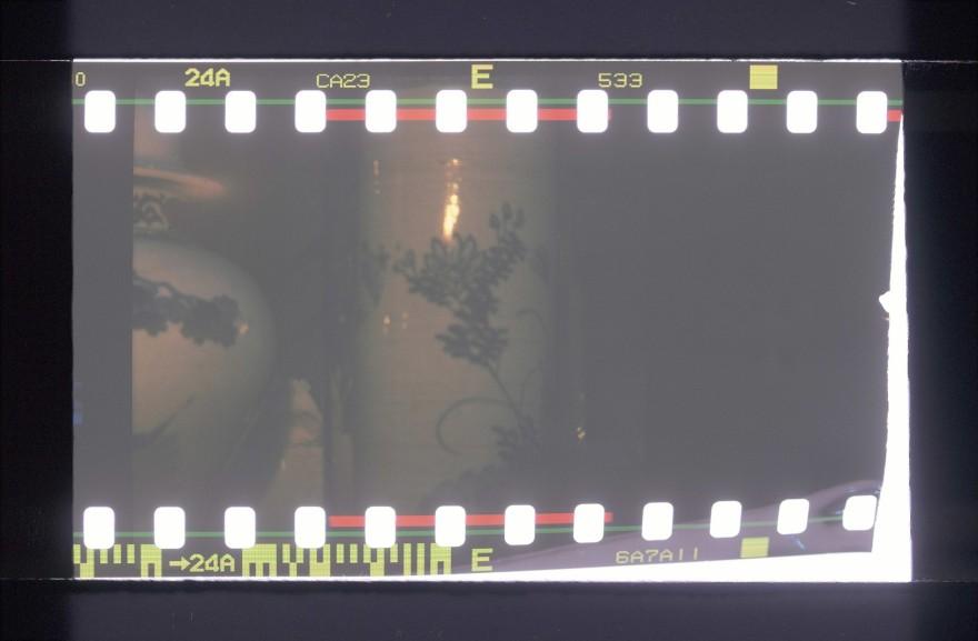 35mm back on Diana F+ pink camera